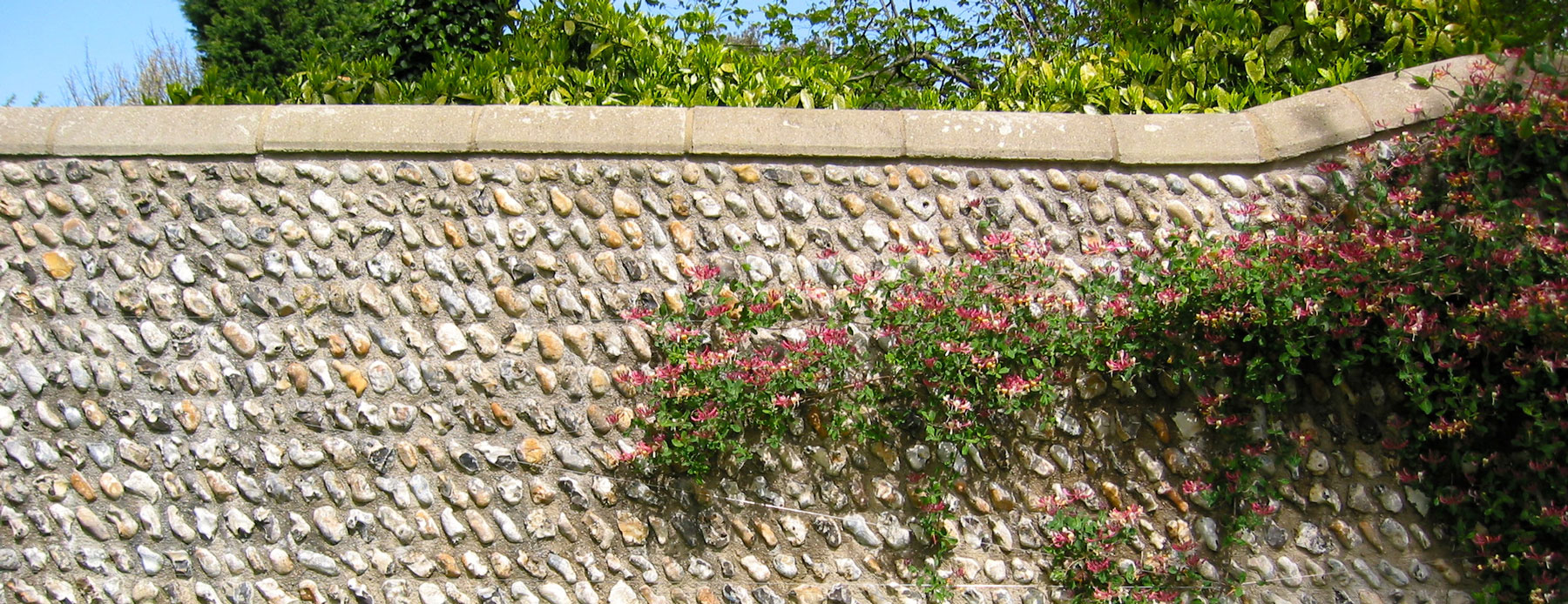 coursed cobble wall - angmering